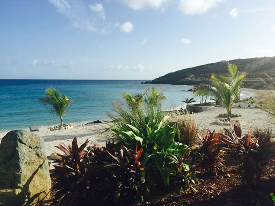 Gallery pic of Indigo Bay, Dutch Antilles with Star Island Tours